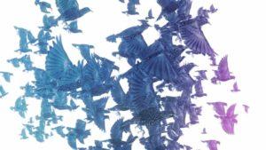 3D modeli ptica u letu, kadar iz novogodišnjeg spota Adris, 3D animacija, tv reklama, video produkcija, produkcija video sadržaja
