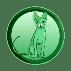 Sfinga mačka, kratka forma 10 - 15 sekundi, tv reklama, video produkcija, produkcija video sadržaja