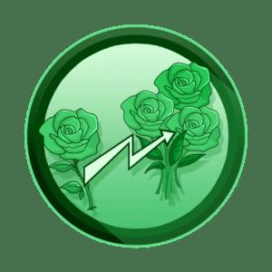 jedna ruža koja se pretvara u buket ruža, povećana konverzija, video produkcija, produkcija video sadržaja
