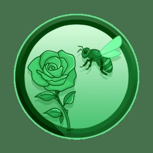 pčela i ruža, privući i zadržati pozornost, video produkcija, produkcija video sadržaja
