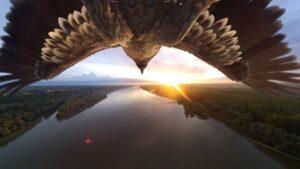 Let orla iznad dunava - VR 3D animacija i 360 video